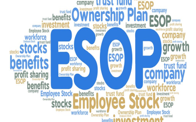 An Introduction To Employee Stock Option Plans (ESOPs)